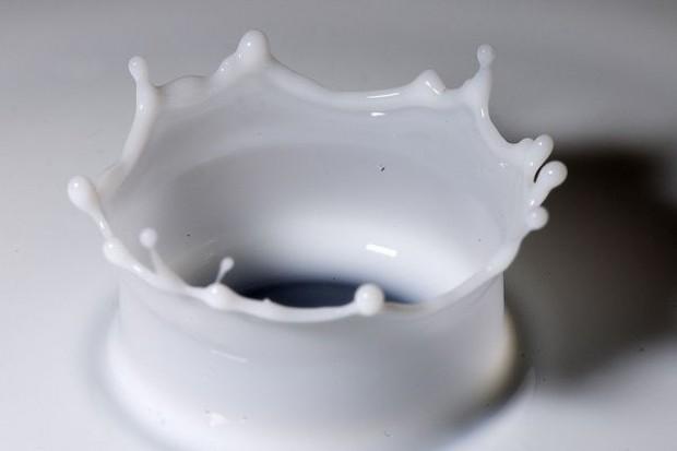 Wysokie światowe ceny przetworów mleczarskich