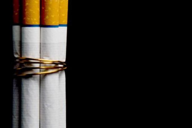 PIMG: Dyrektywa tytoniowa osłabi polski eksport w segmencie rolnym