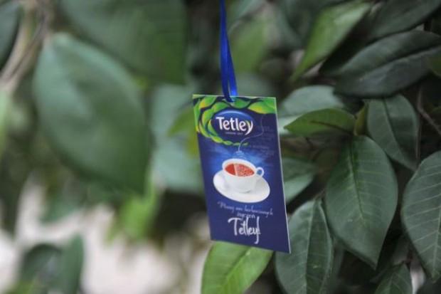 Tetley: Młodzi konsumenci wybierają soki i napoje gazowane, zamiast herbaty