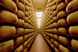 Rekordowa wartość eksportu serów z Polski