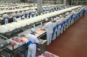Prezes Grupy Sokołów: Zmiany w branży mięsnej nie poszły w najlepszym kierunku