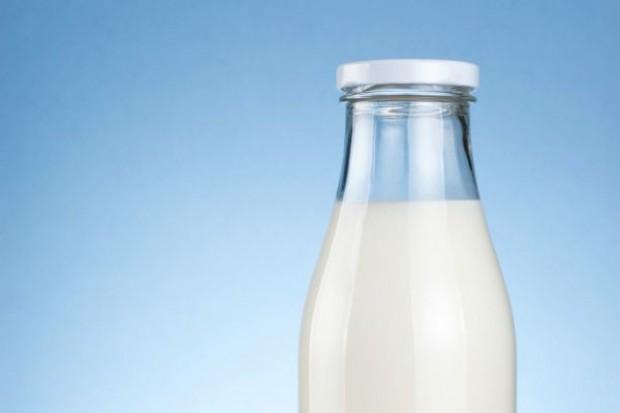 Dobre wyniki branży mleczarskiej w I połowie 2013 roku