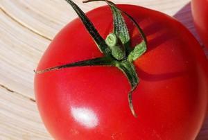 Pudliszki: Pomidorowe plony są w tym roku niższe niż w latach ubiegłych