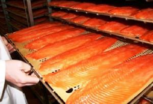 KE zmniejsza kwoty połowowe łososia dla Polski z powodu przełowienia