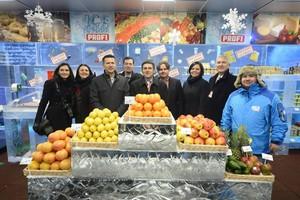 Zdjęcie numer 1 - galeria: Sieć Profi otworzyła 200. sklep - wykonany z lodu (galeria zdjęć)