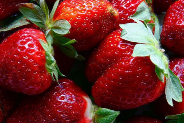 Polska znaczącym producentem truskawek, malin i borówki w UE