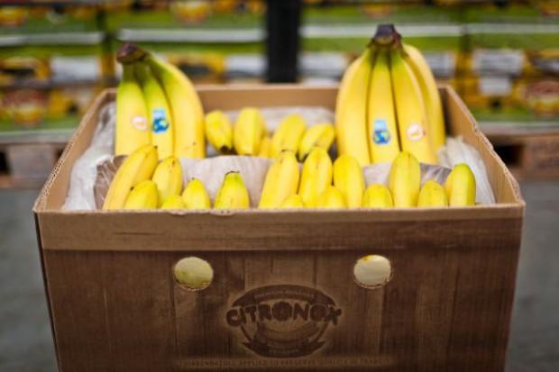 Citronex inwestuje w przetwórstwo bananów