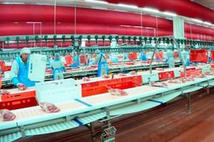 Litwa i Polska chcą rekompensat dla producentów wieprzowiny