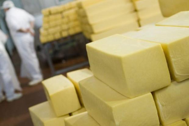 Eksport polskich serów wzrósł. Najbardziej do Rosji