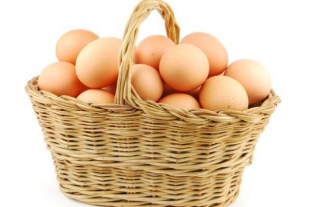Największe fermy produkują 5,5 miliona jaj na dobę