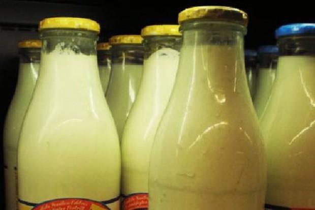 Spadki światowych cen przetworów mleczarskich