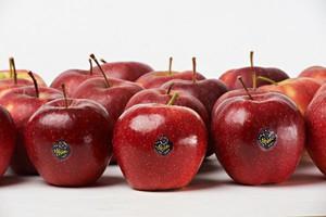 Niskie ceny jabłek deserowych w Polsce