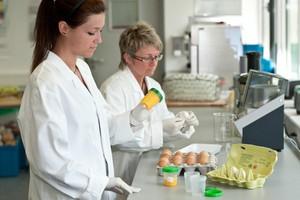 Zarządzanie czystością i higieną w zakładach spożywczych