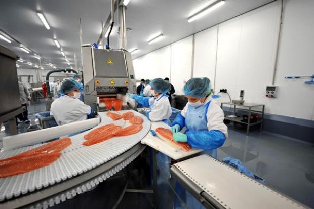 Limito wchodzi w nową kategorię produktów łososiowych