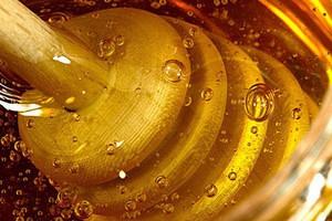 Przez pogodę pszczelarze zbiorą mniej miodu