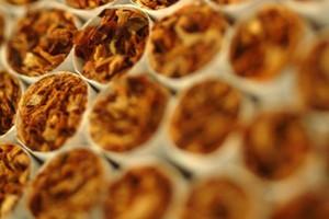 Nielegalny rynek papierosów wciąż rośnie