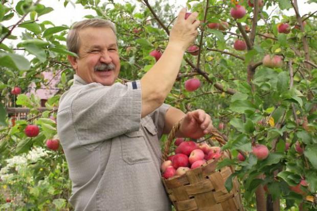 Kryzys na Ukrainie a polski rynek pracy w rolnictwie i przetwórstwie