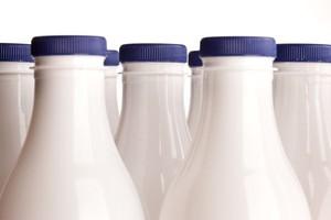 Mlekpol, Polmlek, Polskie Mleko i Nutrimilk z potężnymi inwestycjami