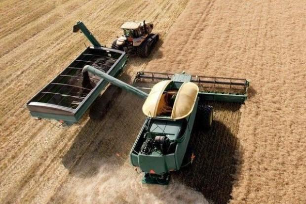Ceny zbóż w tym roku nie będą wysokie