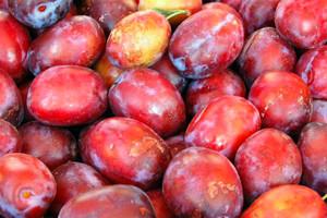 Straty sektora owoców i warzyw przez embargo Rosji mogą wynieść 500 mln euro