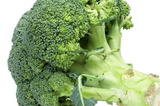 Producenci brokułów nie powinni mocno ucierpieć z powodu embarga