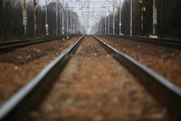 Duża szansa na zwiększenie eksportu polskiej żywności do Kazachstanu koleją