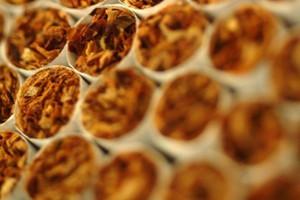 WHO: Wysokie ceny papierosów odstraszają palaczy