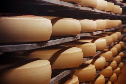 Silne obniżki światowych cen przetworów mleczarskich