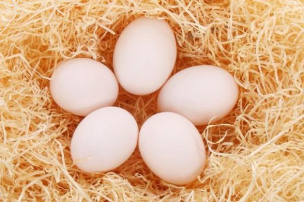 W pierwszej połowie roku wzrósł eksport jaj z Polski