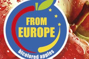 Dwukolorowe jabłka podbiją Chiny i kraje arabskie? Rusza kampania promocyjna