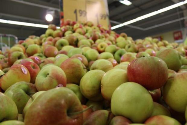 Prof. Makosz: Są szanse na zagospodarowanie wszystkich tegorocznych jabłek