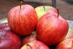 Rekordowe zapasy jabłek w krajach Unii Europejskiej w listopadzie 2014 r.