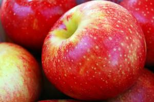 Dodatkowe środki z UE dla polskich producentów jabłek