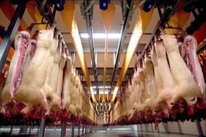 W listopadzie nadal spadały ceny wieprzowiny
