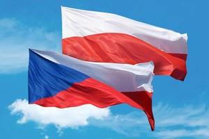 Czesi skarżą swój rząd do Brukseli za utrudnienia w handlu żywnością