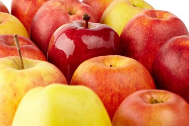 Eksport polskich jabłek do Indii już możliwy, choć ryzykowny