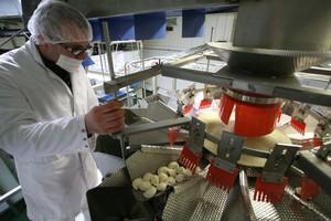 Zdjęcie numer 2 - galeria: Pierogi - jak podwoić  wydajność produkcji?