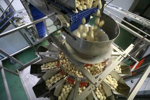 Zdjęcie numer 3 - galeria: Pierogi - jak podwoić  wydajność produkcji?