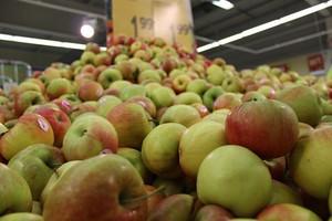 Pomimo embarga, wzrósł wolumen unijnego eksportu warzyw i owoców