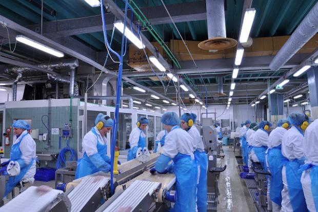 Nadchodzi druga fala inwestycji w polskim przemyśle spożywczym