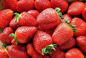 Ceny mrożonych owoców na rynku UE
