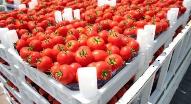 Turkmenistan otwarty na eksport produktów pochodzenia roślinnego z Polski