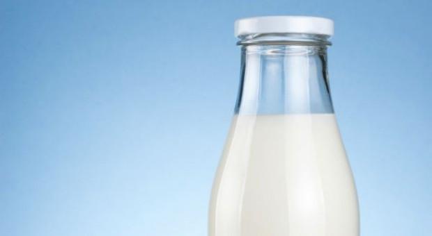 Dalsze obniżki cen skupu mleka w Polsce