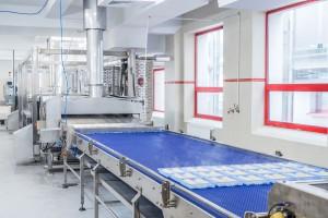 Zdjęcie numer 5 - galeria: Ajinomoto i Jawo otworzyły fabrykę mrożonej żywności - galeria zdjęć