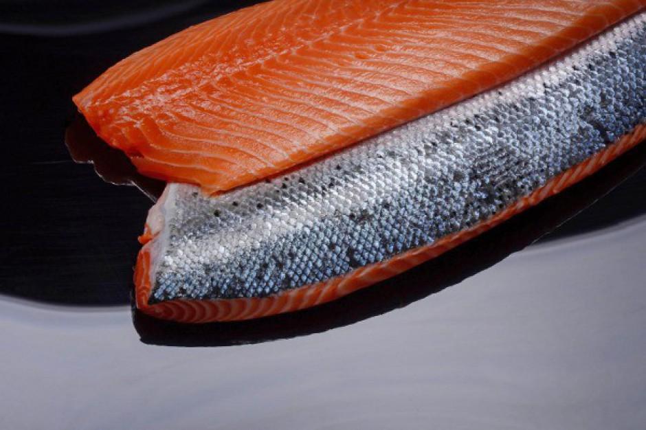 Epigon liczy na umocnienie się na rynku świeżego łososia w 2015 r.