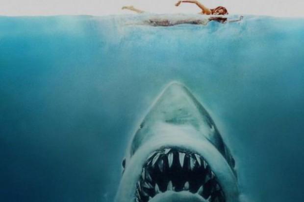 Groźny rekin w Biedronce!