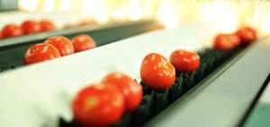 Citronex: Niestabilna waluta uderza w branżę owoców i warzyw