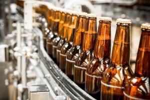 Produkcja piwa rośnie