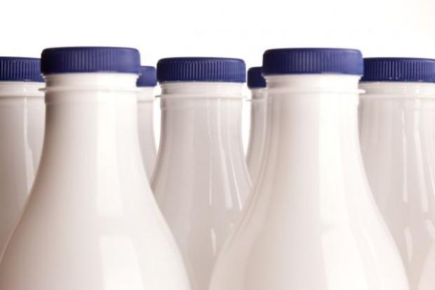Produkcja mleka wymaga planów, analiz i symulacji