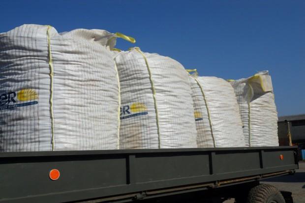 Unijny eksport zbóż notuje dobre wyniki